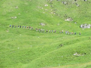 As we hiked down the meadow, we saw this group hiking out above us. Glad we were going another direction!
