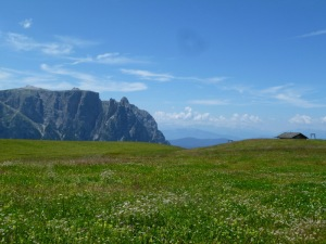 Alpine meadow view of the Sciliar