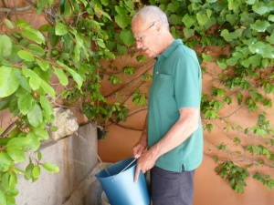 Ric makes the umpteenth trip to fill a bucket. We have tons of bottled water on hand, too, because that's what we do in Rome.  And there's always wine.