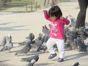 This little girl was endlessly fascinated by the pigeons.