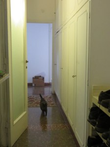 Many Italian apartments have a service hallway, leading to the kitchen, that can be closed off.  That's Janie trotting toward the camera.
