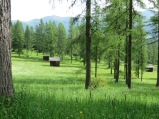 The broad Val Fiscalina is filled with meadows and woods and made for pleasant hiking.