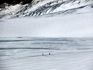 People walking on the glacier beneath the Jungfraujoch.