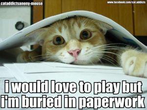 paperwork meme 2