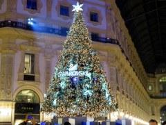 Swarovski's tree dominates the center of the Galleria Vittorio Emanuele.