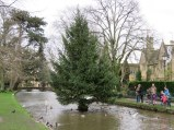 I love the Christmas tree in the middle of the stream, Bourton-on-the-Water.