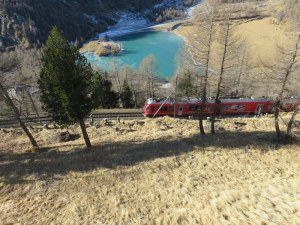 Bernina Express . Just threw this one in as a beauty shot.