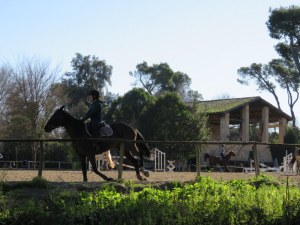 Equestrian center, Villa Ada.