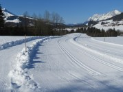 Like a three lane highway, the trail on the left is for hikers, the two on the right for Nordic skiing.