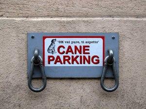 Cane parking