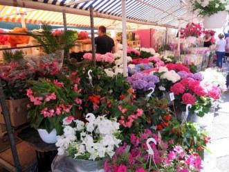 Flower market, Nice.