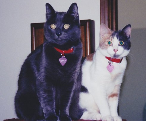 "This is Libby with ""sister"" Janie in 2002. They did not always get along so well, like any sisters."