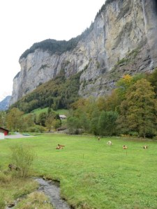 This is the view from our apartment in the valley. Cows in the meadow, and a magnificent waterfall.