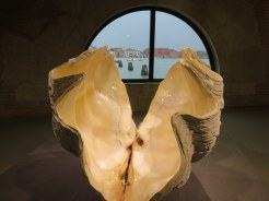 Hirst's giant clamshell displayed in the historic Punta della Dogana.