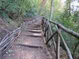 It is hard to tell, but the path was very steep, leading down into a ravine. It was another good workout!