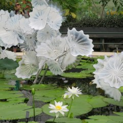 Chiluly white glass lillies